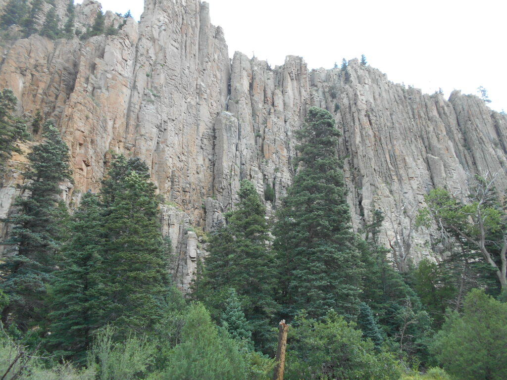 A magnificent cliff-face of grey and ochre rock, with tall pines in front of it.